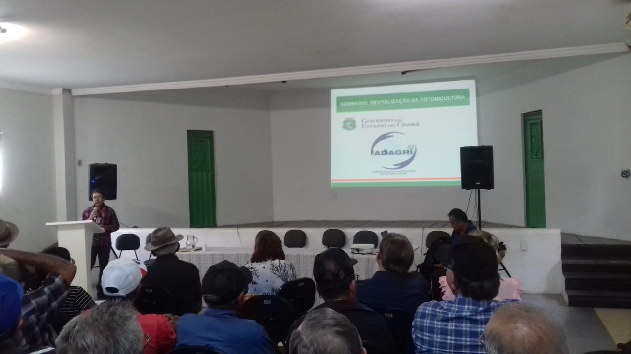 Seminário discute revitalização da cotonicultura