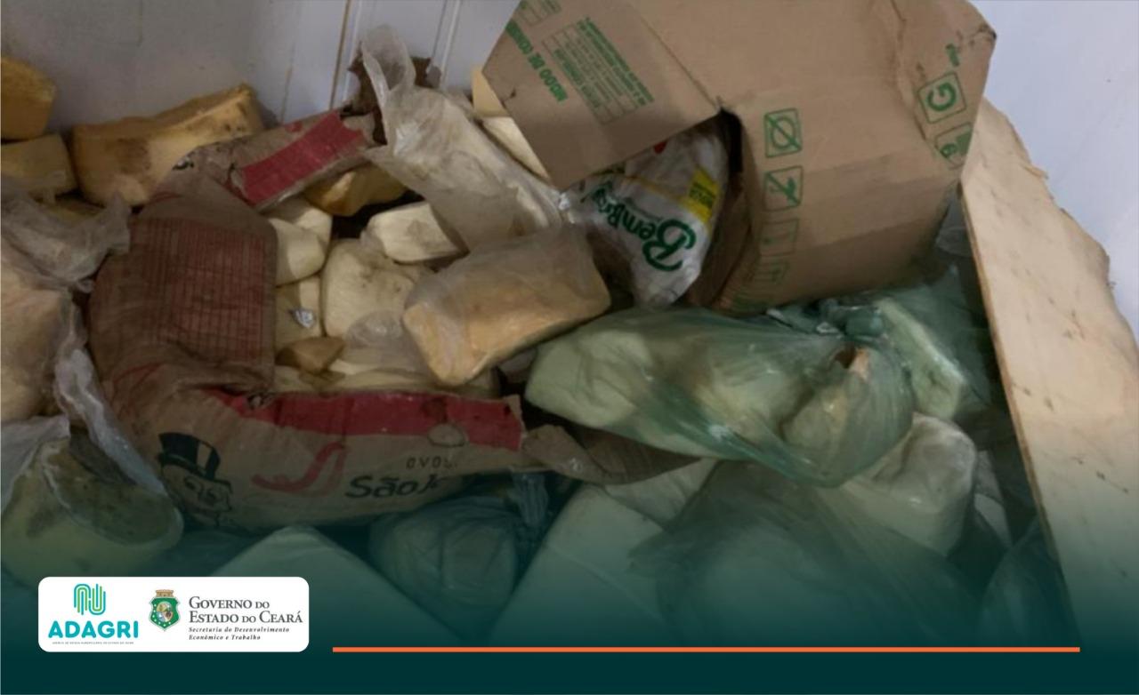 Adagri apreende e encaminha para análise 50 toneladas de queijo encontradas em depósito clandestino