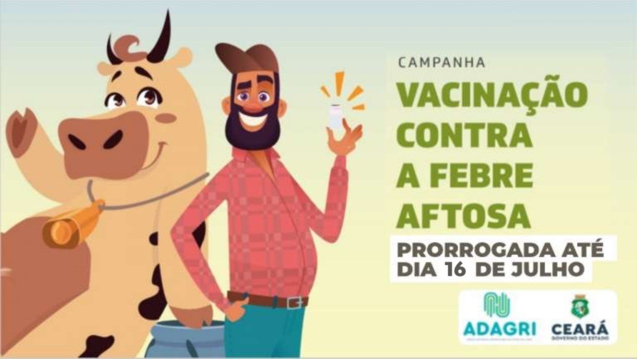 Primeira etapa de vacinação contra Febre Aftosa é estendida até o dia 16 de julho